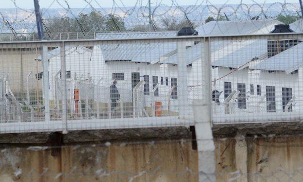 ROCA: Detienen a joven que arrojaba pelotas de tenis con droga dentro del Penal